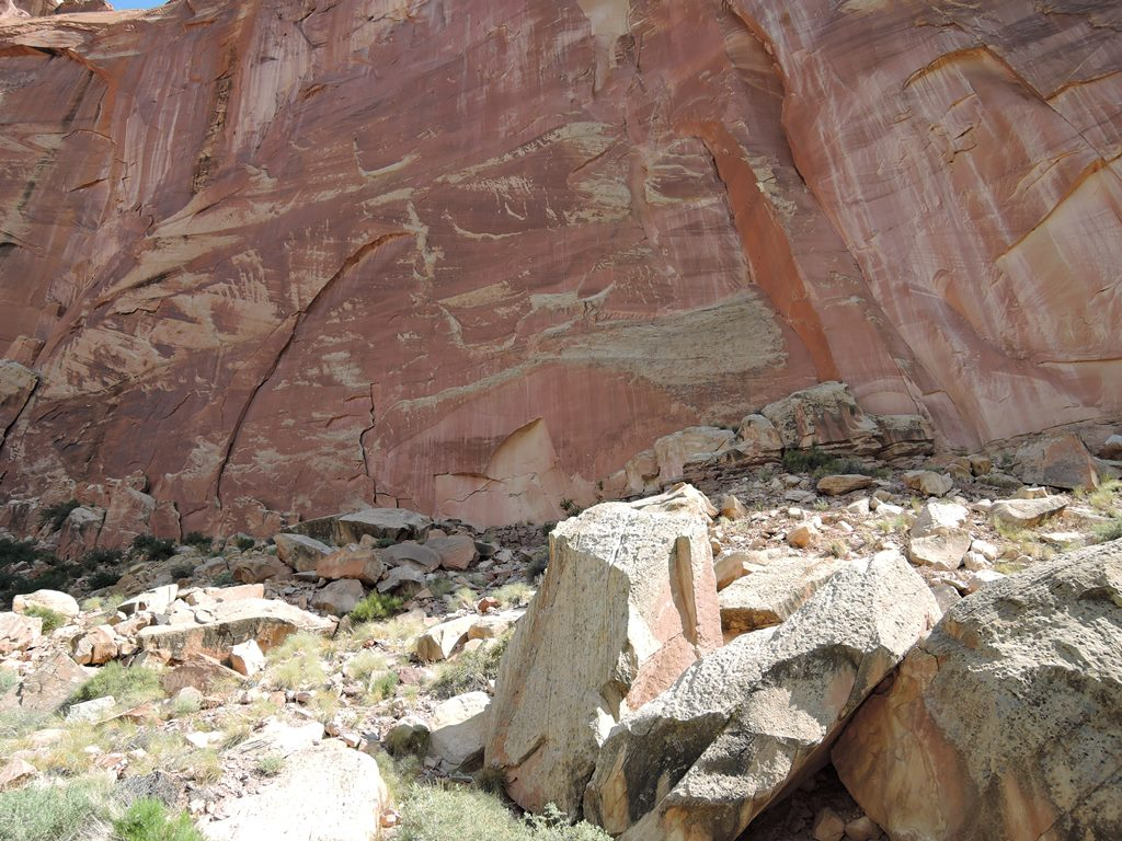 Our may 14 trip to capitol reef and natural bridges petroglyphs publicscrutiny Gallery